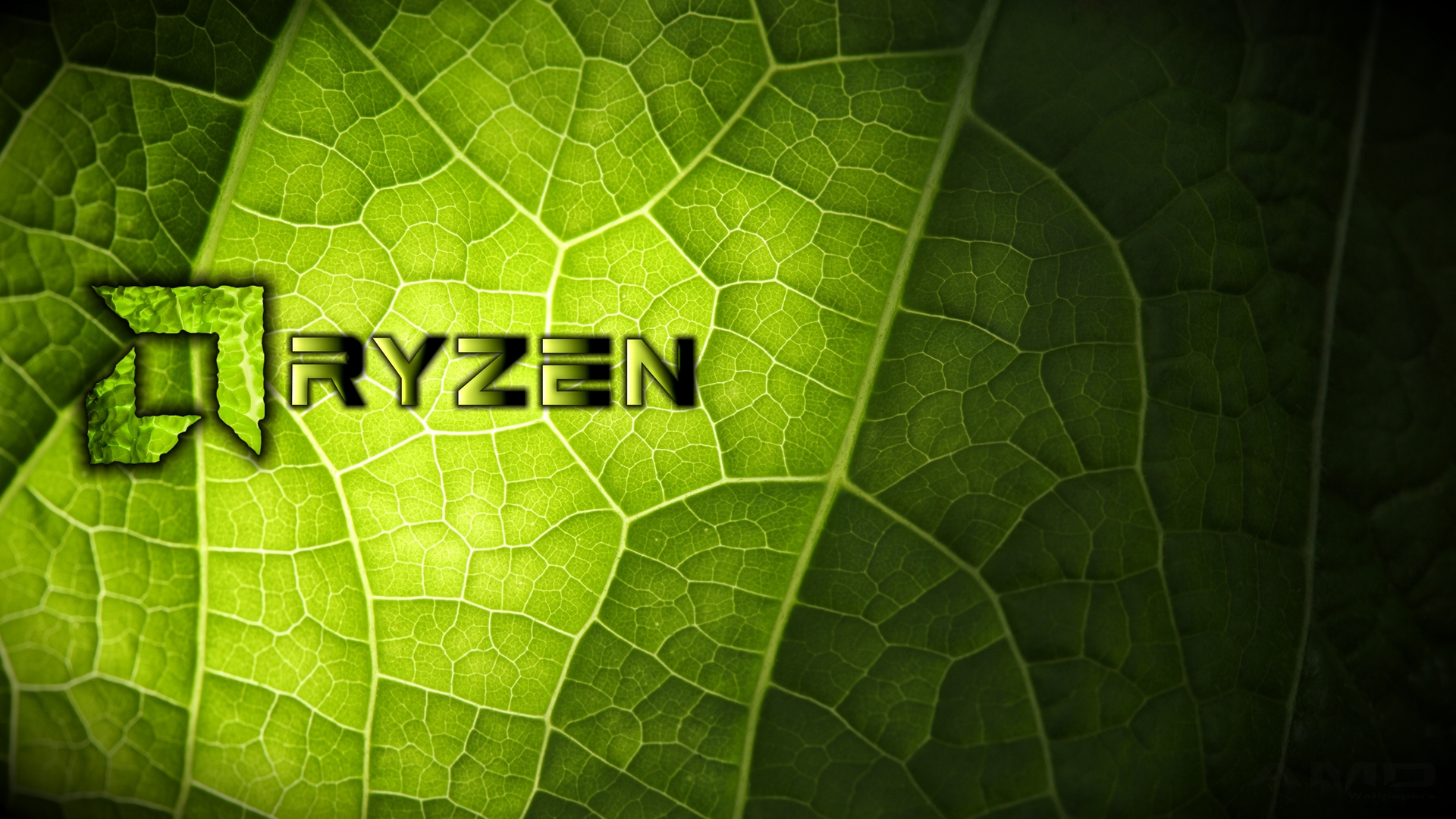 4K_HD_AMD_Ryzen_Green_Leaf_wallpaper.jpg